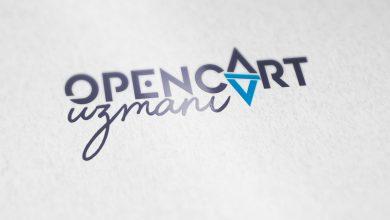 Photo of Opencart Uzmanları Ne İş Yapar?